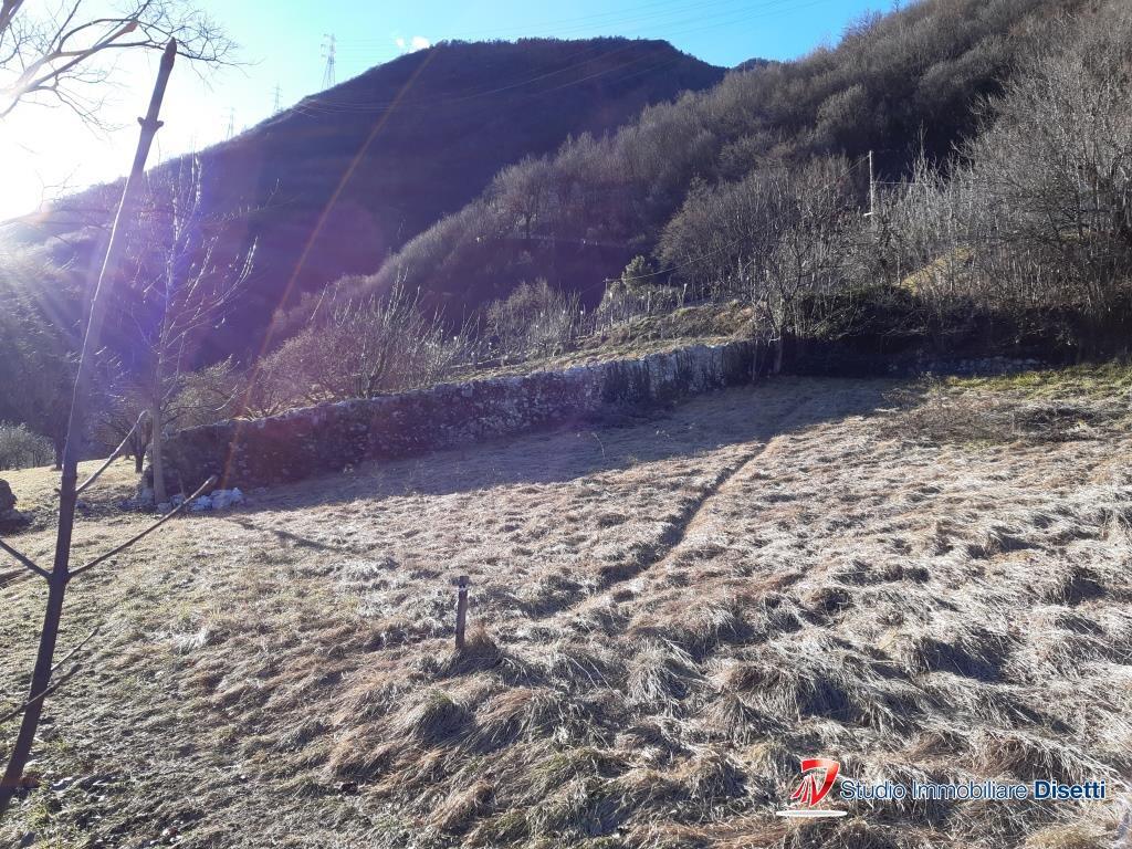 Terreno Edificabile Residenziale in vendita a Losine, 9999 locali, prezzo € 194.000 | CambioCasa.it